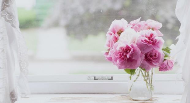 54ff22514a729-flowers-windowsill-calm-de-2